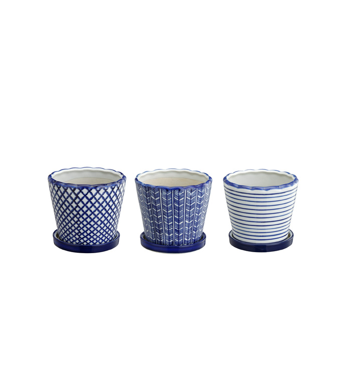 Small Blue/White Planter With Sauce