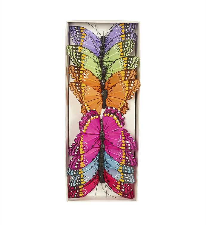 Large Colorful Butterfly, Box of 12