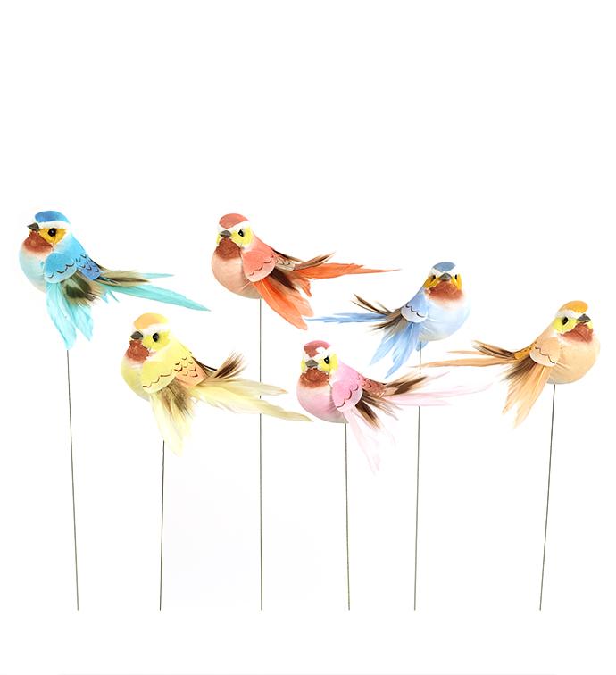Pastel Bird, Box of 12