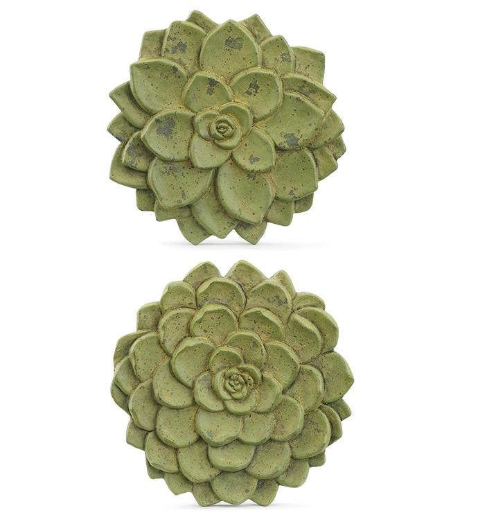 Succulent Step Stones, 2 Assorted