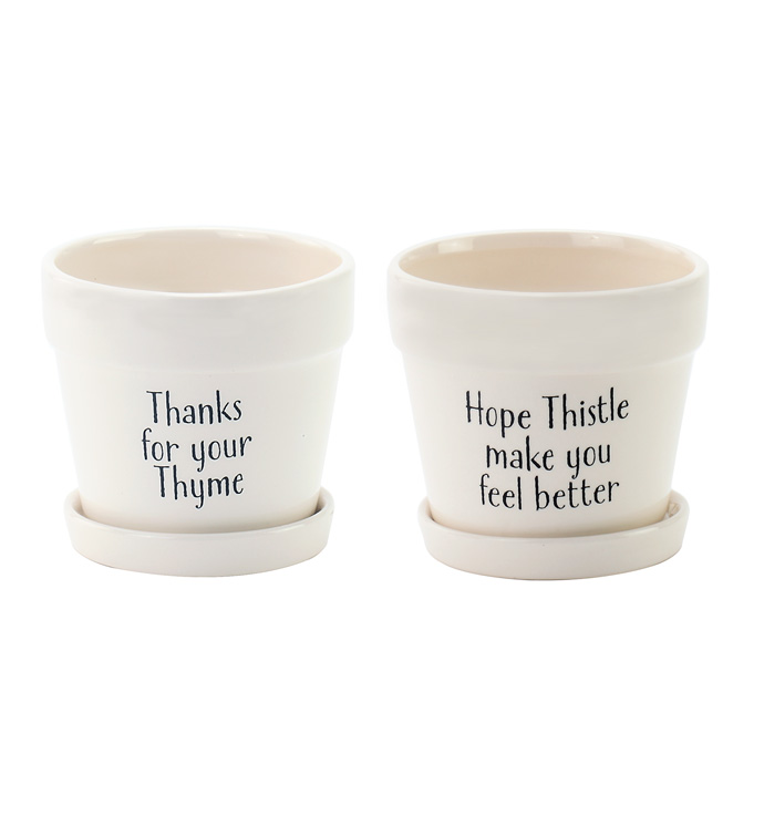 """4.5"""" Decal Pots with Saucer, 2 Asso"""