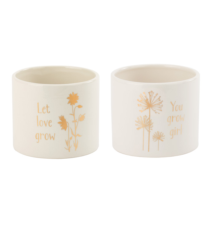 Gold Decal Planter, 2 Assorted