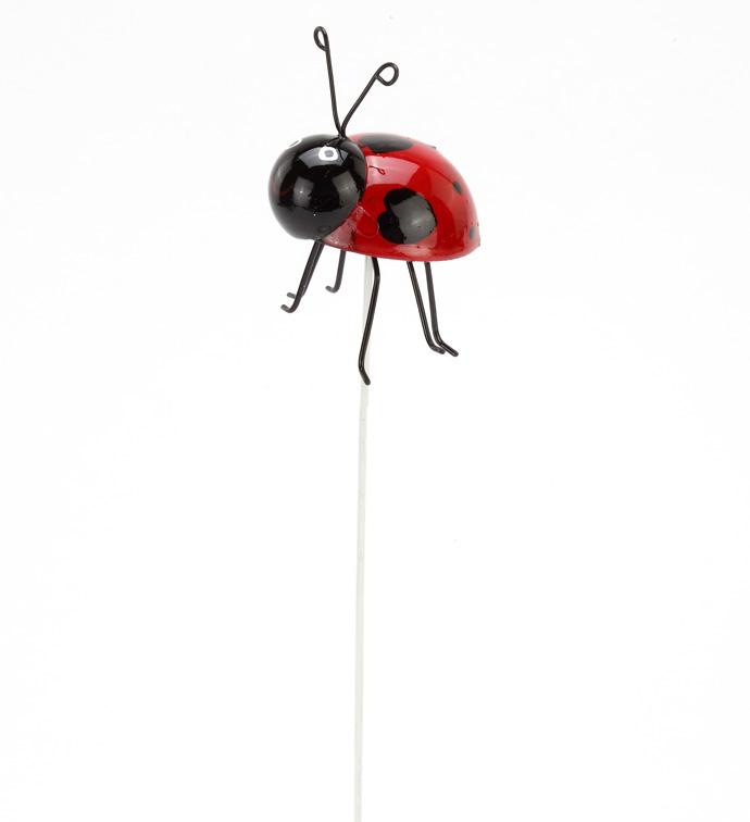 Lady Bug Pick