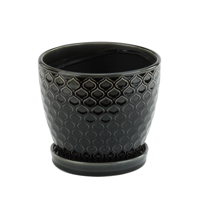 """6"""" Black Laser Pot With Saucer"""