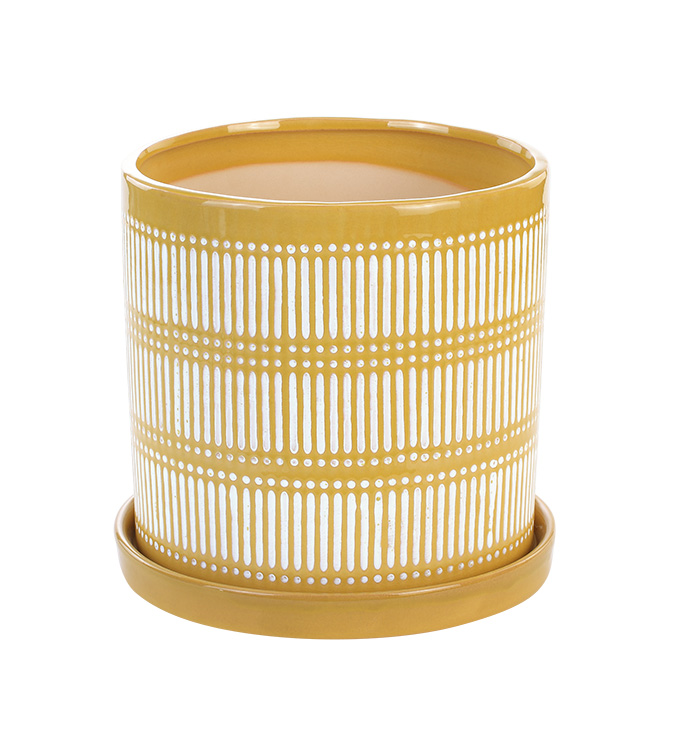 """6"""" Yellow Linear Pot with Saucer"""
