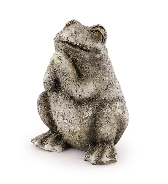 Wishful Garden Frog
