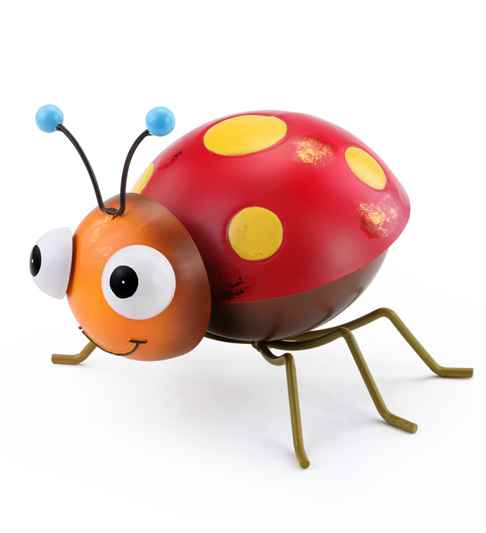 Large Red Beetle