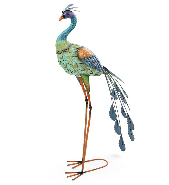 Standing Peacock