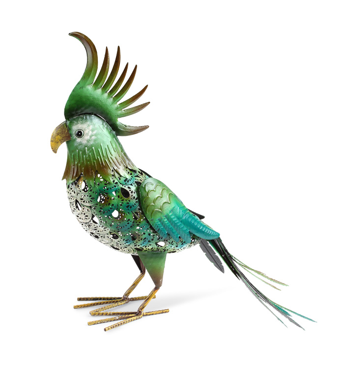 Garden Cockatoo