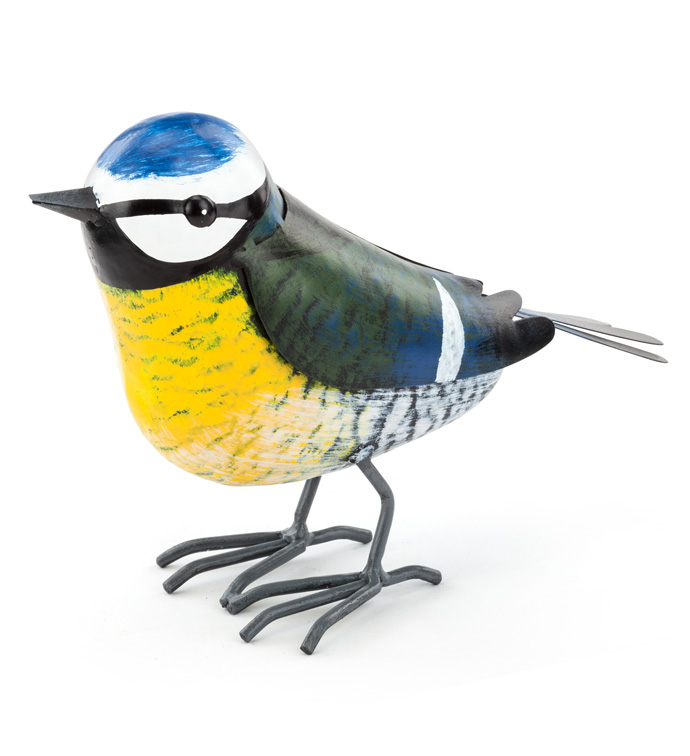 Large Garden Finch