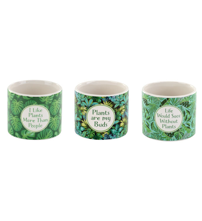 Green Witty Planter, 3 Assorted
