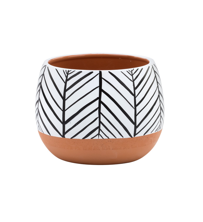 "4.5"" Zebra/Terra Planter"