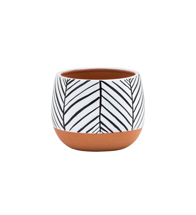 "4"" Zebra/Terra Planter"