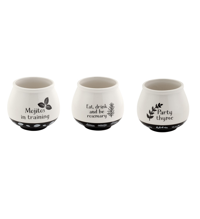 Herbs Cache, 3 Assorted