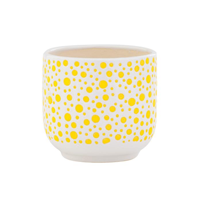 Yellow Polka Dot Cache