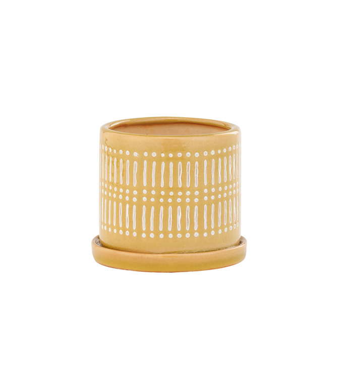 Small Yellow Linear Pot w/Saucer
