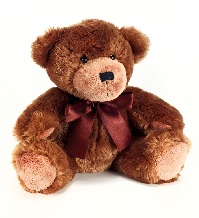 "10"" Chocolate Brown Bear"