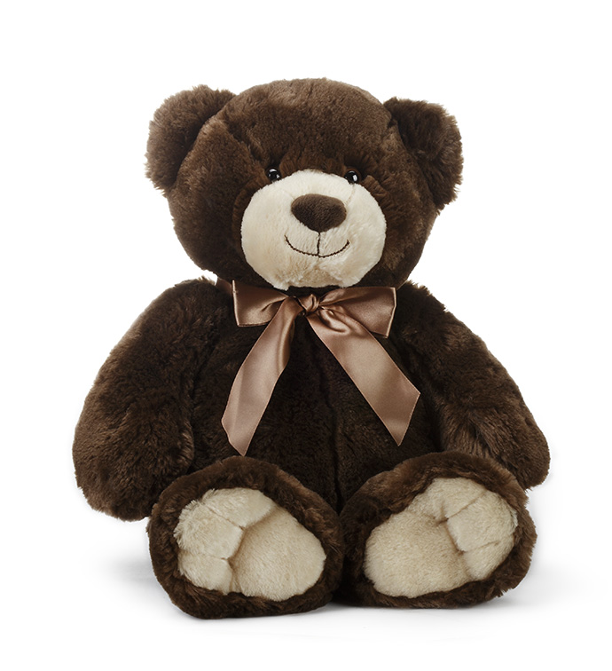 Medium Brown Bear