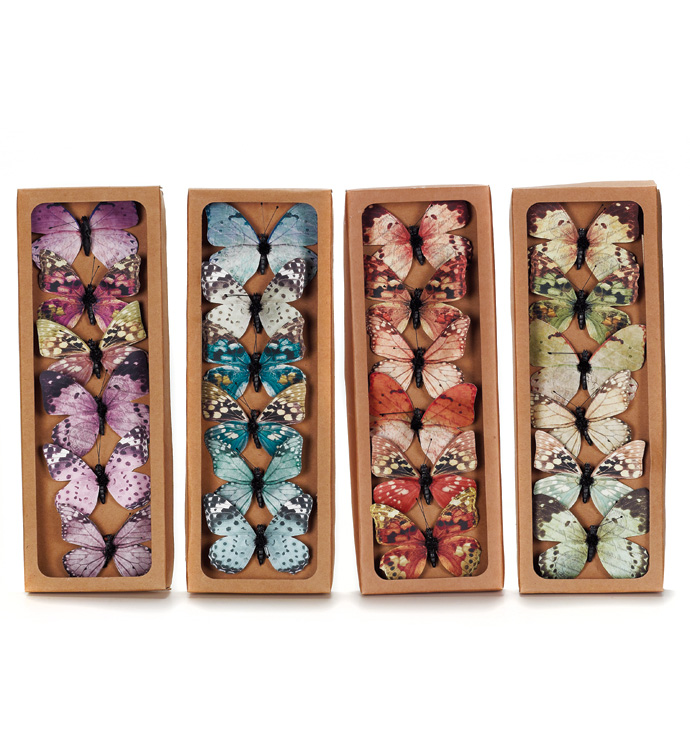Small Spring Butterflies, Box of 6