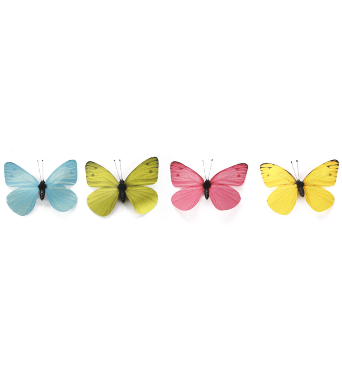 Small Spring Butterfly, Box of 8