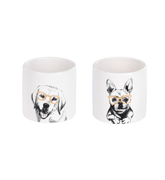 Cool Dogs Planter, 2 Assorted