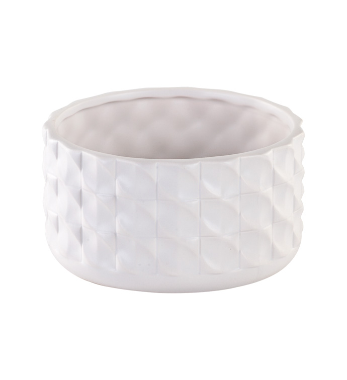 "6"" White Braided Dish Garden"