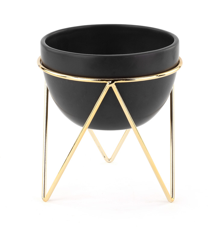 Black Bowl in Gold Stand