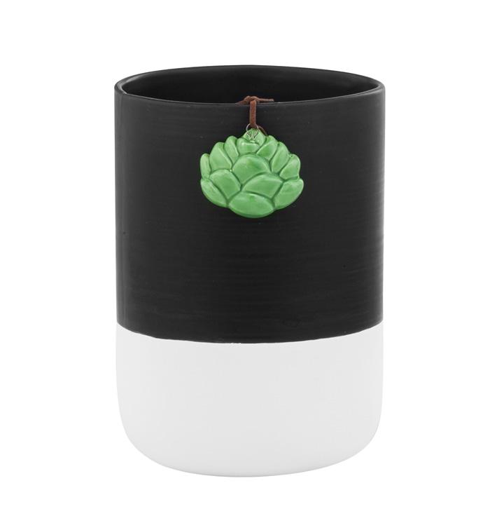 Black/White Vase with Succulen