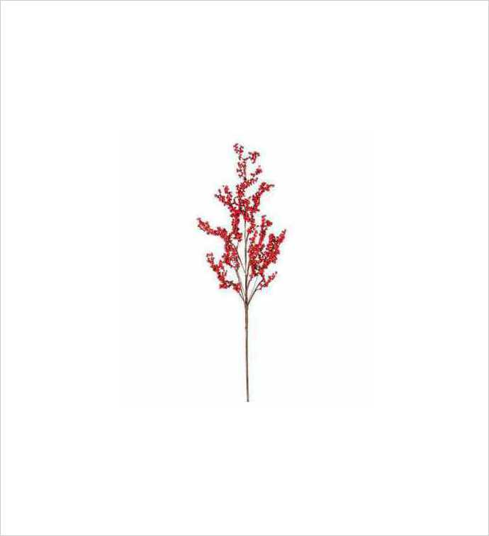 Red Mountain Waterberry Spray