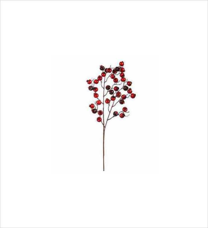 Crabapple Waterberry Pick