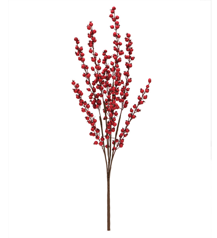 Red Spike Berry Bush