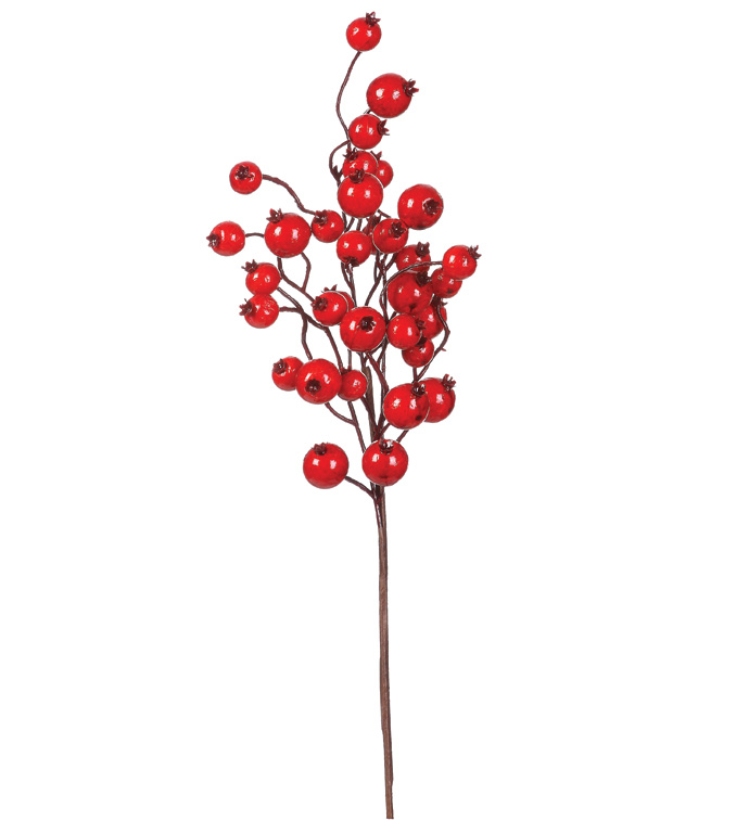 Red Cranberry Pick