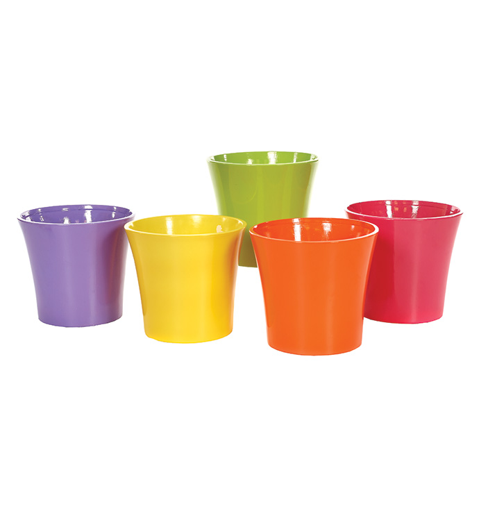 Flower Power Large Cache,5 Assorted