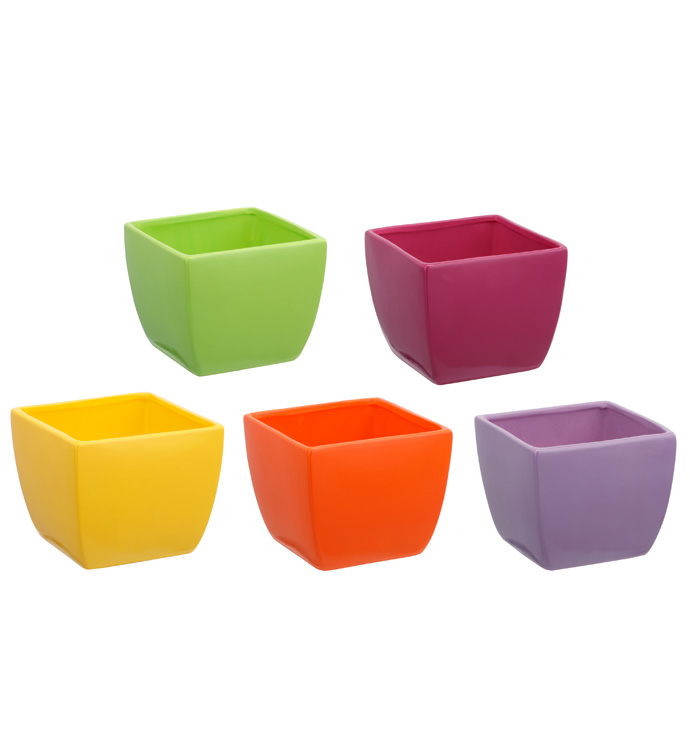 Bright Tapered Planter, 5 Assorted