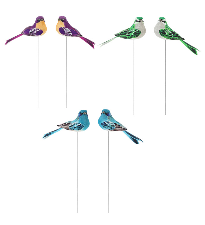 Bird Pick, 3 Assorted 12 Pc Box