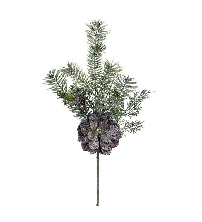 Iced Pine & Succulent Spray