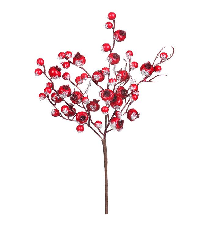 Red Snow Crabapple Pick