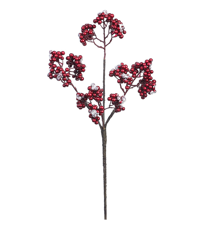 Red Snow Berry Pick