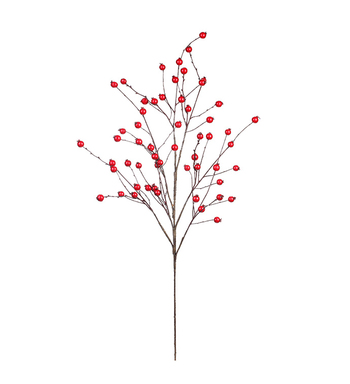 Red Berry Branch