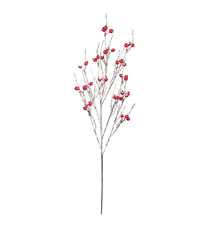 Red Snow Berry Branch