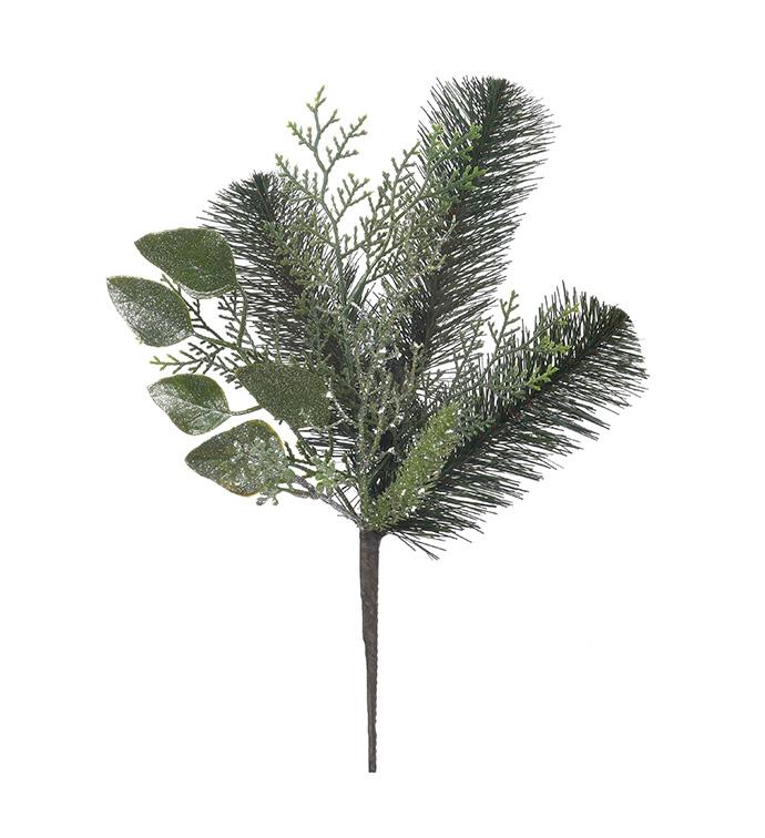 Green Australian Pine Pick