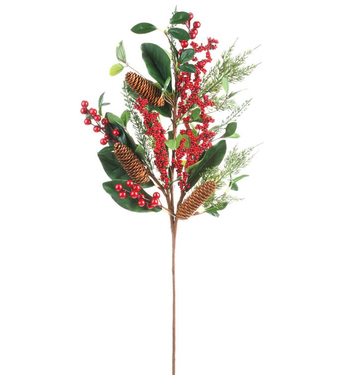 Eucalyptus Red Berries Spray