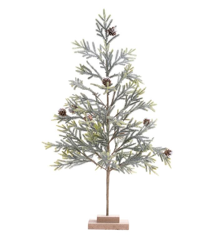 Eucalyptus Berry Tree