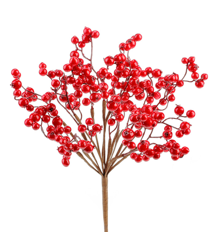 Shiny Red Berry Cluster/Bush