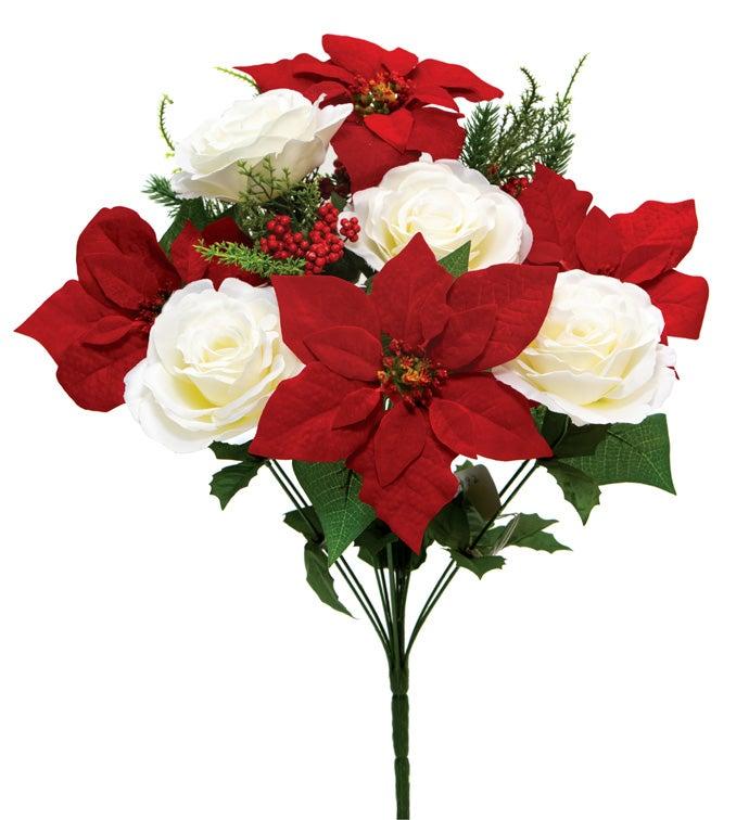 Poinsettia/Rose Bush