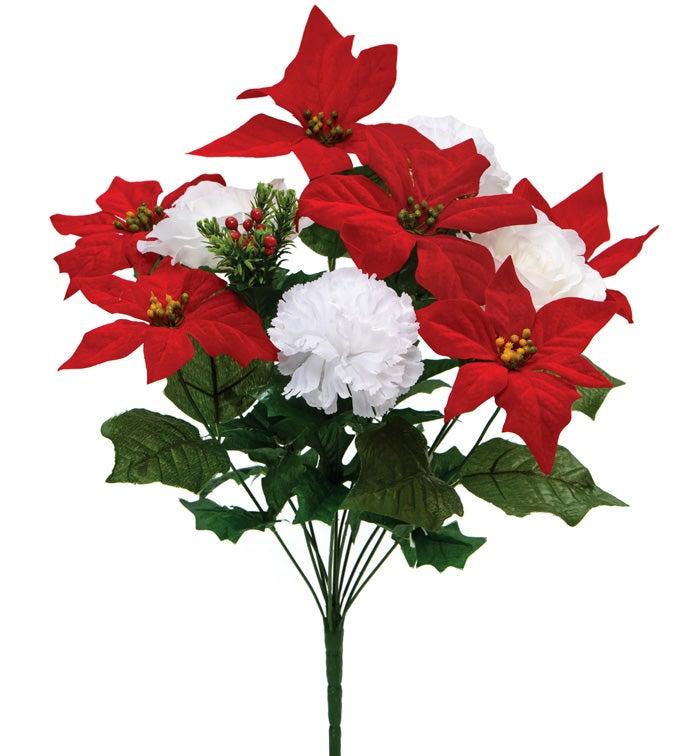 Poinsettia/Carnation/Rose Bush