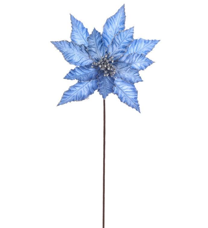 Wintery Blue Poinsettia