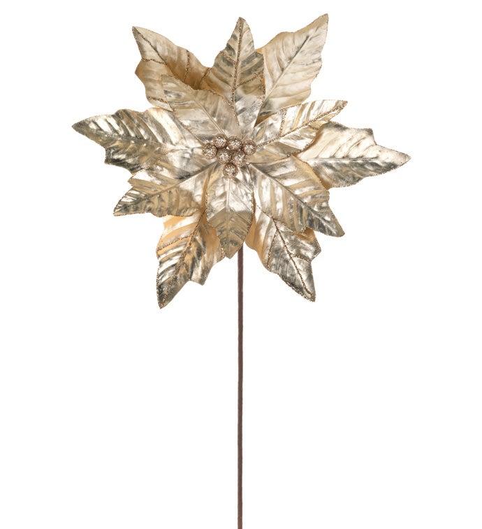 Champagne Metallic Poinsettia