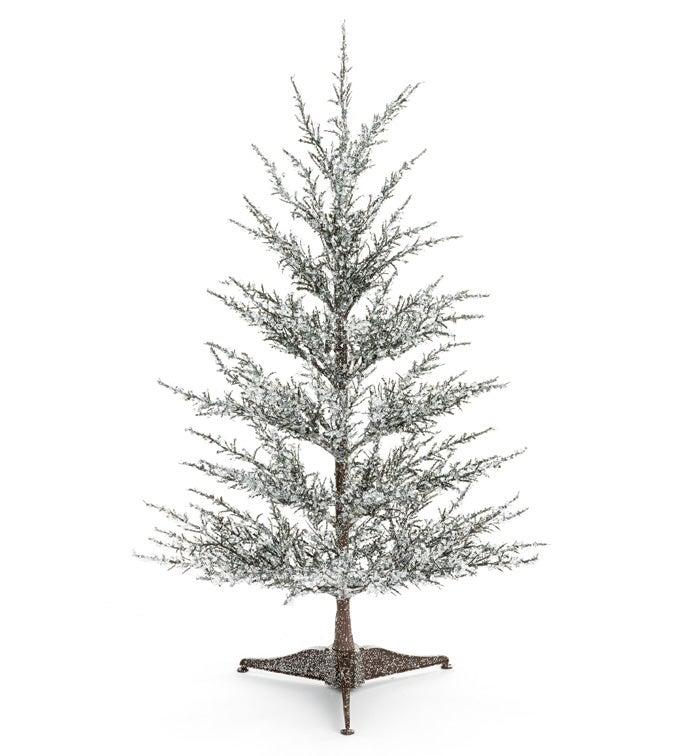 Iced Balsam Tree
