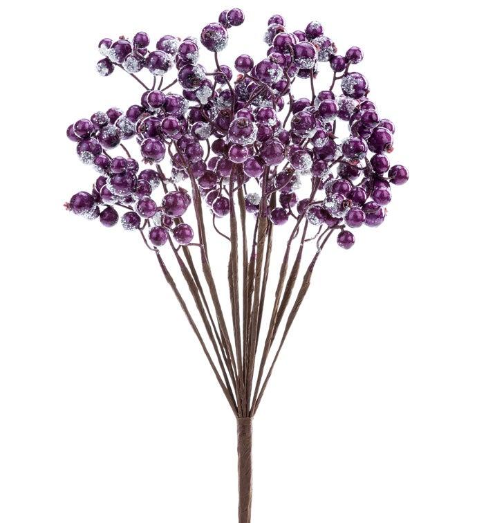 Snowy Purple Berry Bush